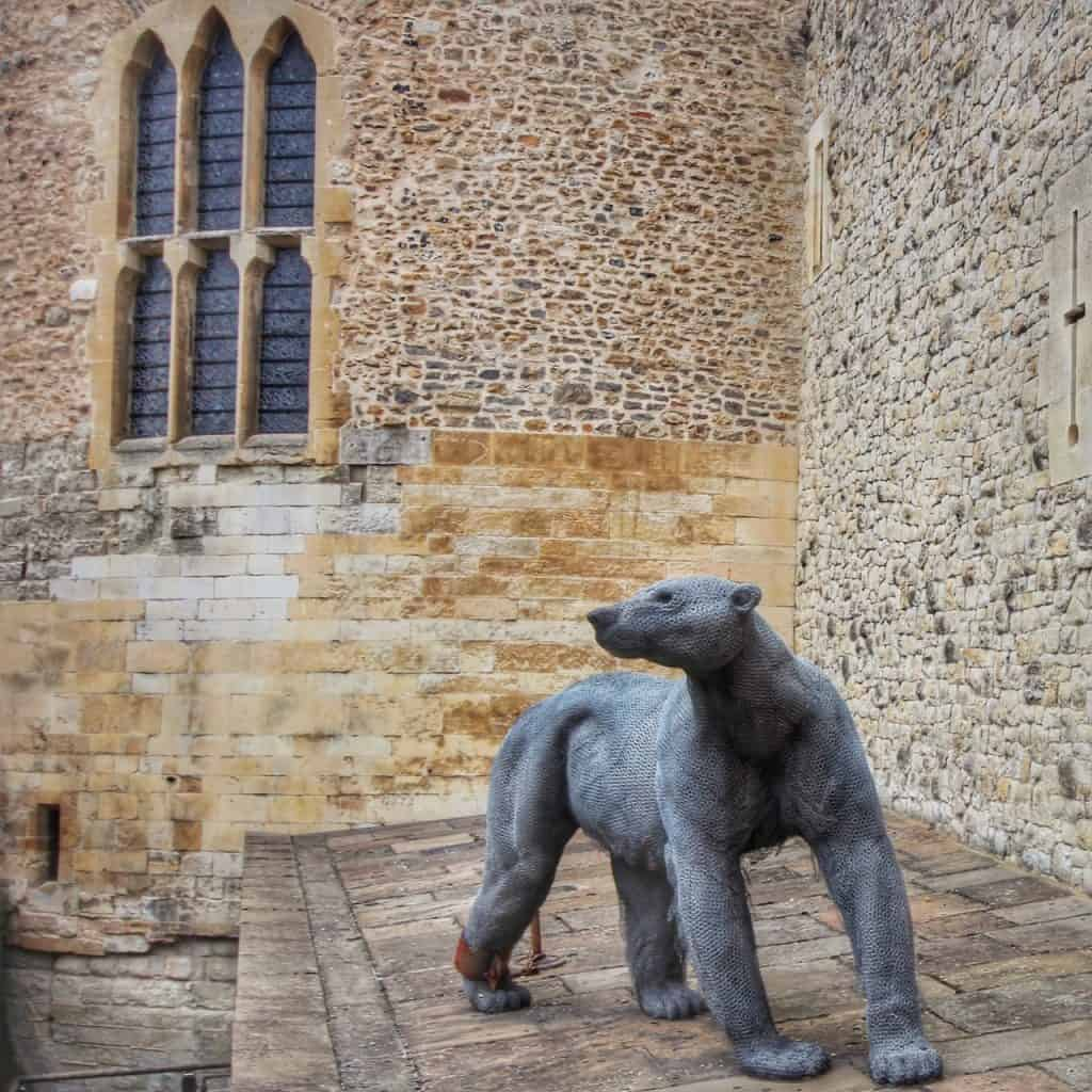 Polar Bear at the Tower of London